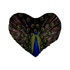 Bird Peacock Display Full Elegant Plumage Standard 16  Premium Flano Heart Shape Cushions by Amaryn4rt