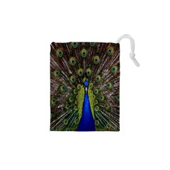 Bird Peacock Display Full Elegant Plumage Drawstring Pouches (xs)  by Amaryn4rt