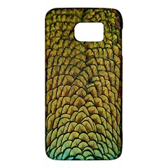 Colorful Iridescent Feather Bird Color Peacock Galaxy S6