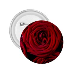 Roses Flowers Red Forest Bloom 2 25  Buttons by Amaryn4rt