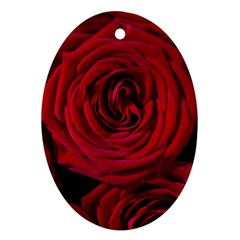 Roses Flowers Red Forest Bloom Ornament (oval) by Amaryn4rt