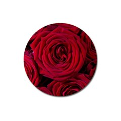 Roses Flowers Red Forest Bloom Magnet 3  (Round)
