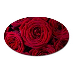 Roses Flowers Red Forest Bloom Oval Magnet by Amaryn4rt