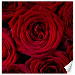 Roses Flowers Red Forest Bloom Canvas 16  x 16