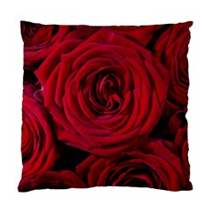 Roses Flowers Red Forest Bloom Standard Cushion Case (one Side) by Amaryn4rt