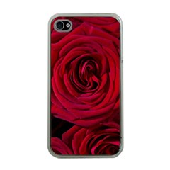 Roses Flowers Red Forest Bloom Apple iPhone 4 Case (Clear)