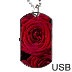 Roses Flowers Red Forest Bloom Dog Tag Usb Flash (two Sides) by Amaryn4rt