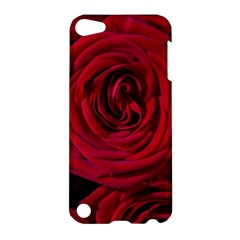 Roses Flowers Red Forest Bloom Apple Ipod Touch 5 Hardshell Case by Amaryn4rt