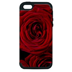 Roses Flowers Red Forest Bloom Apple Iphone 5 Hardshell Case (pc+silicone) by Amaryn4rt