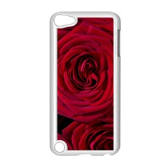 Roses Flowers Red Forest Bloom Apple Ipod Touch 5 Case (white) by Amaryn4rt