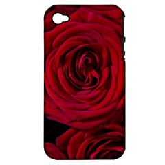 Roses Flowers Red Forest Bloom Apple Iphone 4/4s Hardshell Case (pc+silicone) by Amaryn4rt