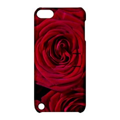 Roses Flowers Red Forest Bloom Apple Ipod Touch 5 Hardshell Case With Stand by Amaryn4rt