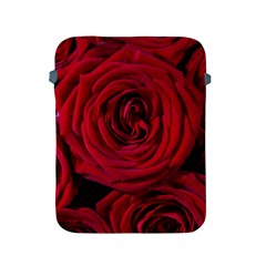 Roses Flowers Red Forest Bloom Apple Ipad 2/3/4 Protective Soft Cases by Amaryn4rt