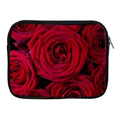 Roses Flowers Red Forest Bloom Apple Ipad 2/3/4 Zipper Cases by Amaryn4rt