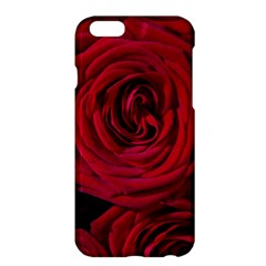 Roses Flowers Red Forest Bloom Apple Iphone 6 Plus/6s Plus Hardshell Case by Amaryn4rt