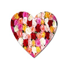 Rose Color Beautiful Flowers Heart Magnet by Amaryn4rt