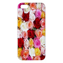 Rose Color Beautiful Flowers Apple Iphone 5 Premium Hardshell Case by Amaryn4rt