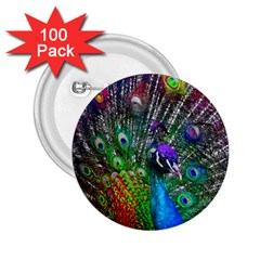 3d Peacock Pattern 2 25  Buttons (100 Pack)  by Amaryn4rt