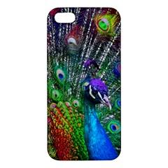 3d Peacock Pattern Apple Iphone 5 Premium Hardshell Case by Amaryn4rt