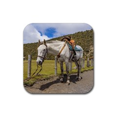 White Horse Tied Up At Cotopaxi National Park Ecuador Rubber Coaster (square)  by dflcprints