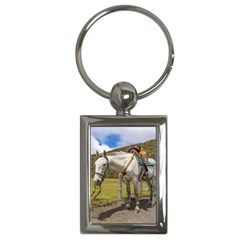 White Horse Tied Up At Cotopaxi National Park Ecuador Key Chains (rectangle)  by dflcprints