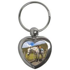White Horse Tied Up At Cotopaxi National Park Ecuador Key Chains (heart)  by dflcprints