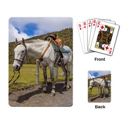 White Horse Tied Up At Cotopaxi National Park Ecuador Playing Card by dflcprints