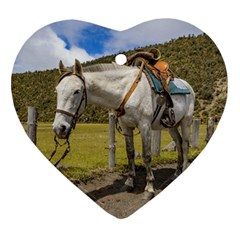 White Horse Tied Up At Cotopaxi National Park Ecuador Heart Ornament (two Sides) by dflcprints
