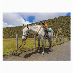 White Horse Tied Up At Cotopaxi National Park Ecuador Large Glasses Cloth by dflcprints