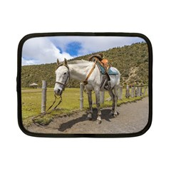 White Horse Tied Up At Cotopaxi National Park Ecuador Netbook Case (small)  by dflcprints