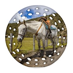 White Horse Tied Up At Cotopaxi National Park Ecuador Ornament (round Filigree) by dflcprints