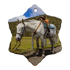 White Horse Tied Up At Cotopaxi National Park Ecuador Snowflake Ornament (two Sides) by dflcprints