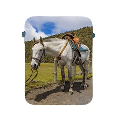 White Horse Tied Up At Cotopaxi National Park Ecuador Apple Ipad 2/3/4 Protective Soft Cases by dflcprints