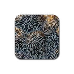 Coral Pattern Rubber Square Coaster (4 Pack)  by Amaryn4rt