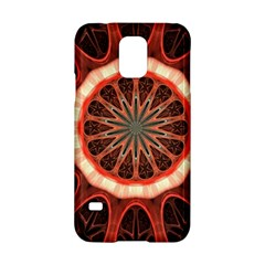 Circle Pattern Samsung Galaxy S5 Hardshell Case  by Amaryn4rt