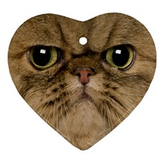 Cute Persian Cat Face In Closeup Ornament (heart) by Amaryn4rt