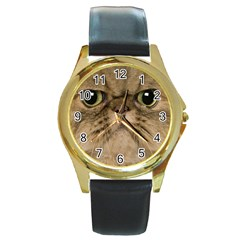 Cute Persian Cat Face In Closeup Round Gold Metal Watch