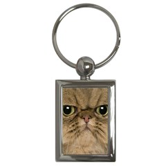 Cute Persian Cat Face In Closeup Key Chains (rectangle)  by Amaryn4rt