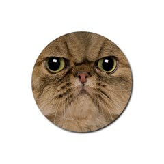 Cute Persian Cat Face In Closeup Rubber Coaster (round)  by Amaryn4rt