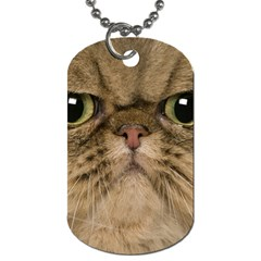 Cute Persian Cat Face In Closeup Dog Tag (one Side) by Amaryn4rt