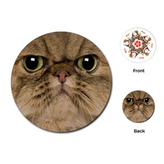 Cute Persian Cat Face In Closeup Playing Cards (round)  by Amaryn4rt