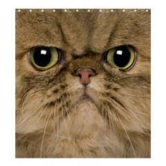Cute Persian Cat Face In Closeup Shower Curtain 66  X 72  (large)
