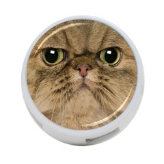 Cute Persian Cat Face In Closeup 4 Port Usb Hub (one Side) by Amaryn4rt