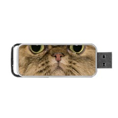 Cute Persian Cat Face In Closeup Portable Usb Flash (two Sides) by Amaryn4rt