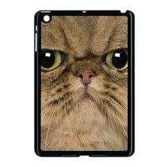 Cute Persian Cat Face In Closeup Apple Ipad Mini Case (black) by Amaryn4rt