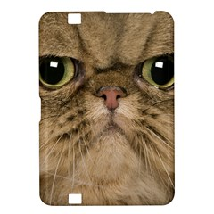 Cute Persian Cat Face In Closeup Kindle Fire Hd 8 9  by Amaryn4rt