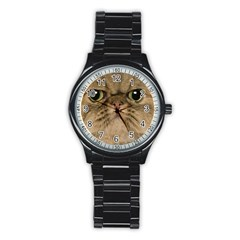 Cute Persian Cat Face In Closeup Stainless Steel Round Watch by Amaryn4rt