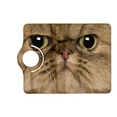 Cute Persian Cat Face In Closeup Kindle Fire Hd (2013) Flip 360 Case by Amaryn4rt