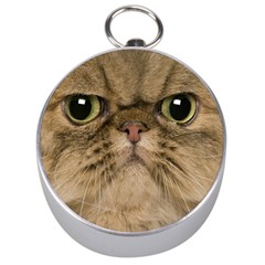 Cute Persian Cat Face In Closeup Silver Compasses by Amaryn4rt