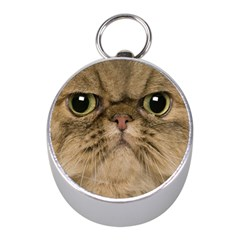 Cute Persian Cat Face In Closeup Mini Silver Compasses by Amaryn4rt